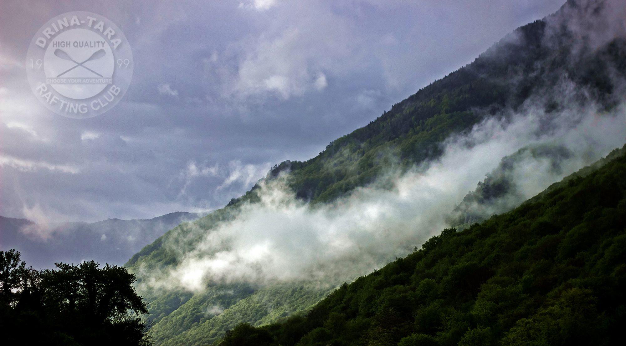 perucica primeval forest